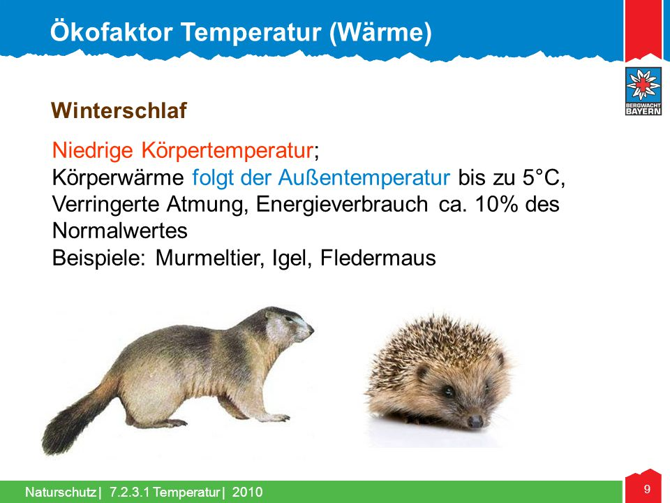 Ökofaktor Temperatur (Wärme)