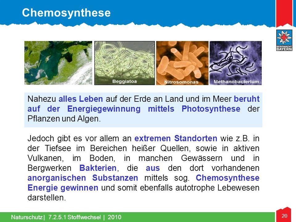 Chemosynthese Nahezu alles Leben auf der Erde an Land und im Meer beruht auf der Energiegewinnung mittels Photosynthese der Pflanzen und Algen.
