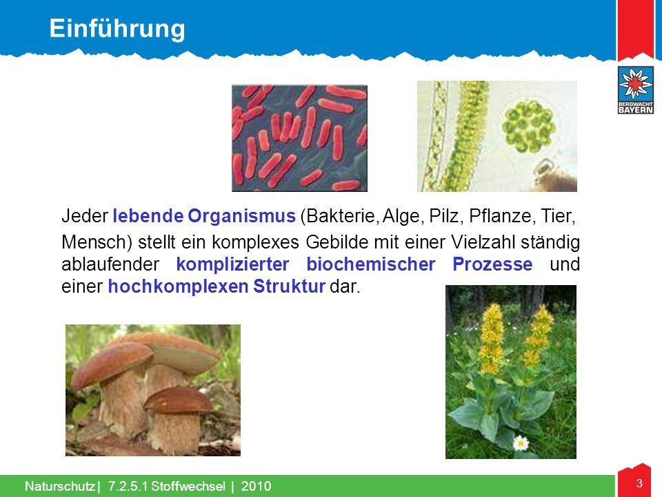 Einführung Jeder lebende Organismus (Bakterie, Alge, Pilz, Pflanze, Tier,