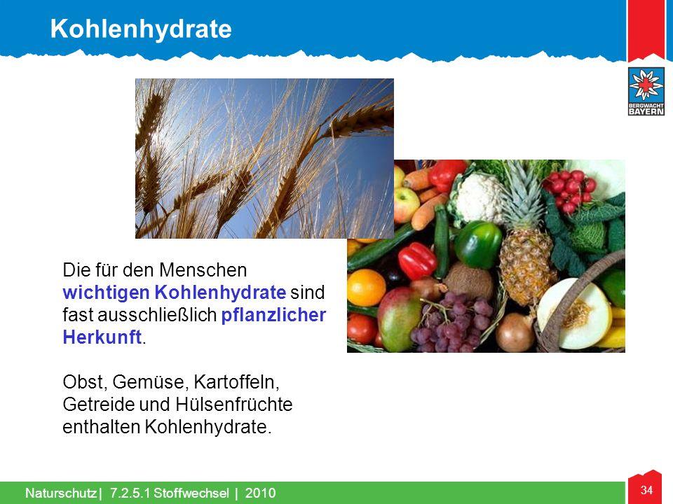 Kohlenhydrate Die für den Menschen wichtigen Kohlenhydrate sind fast ausschließlich pflanzlicher Herkunft.