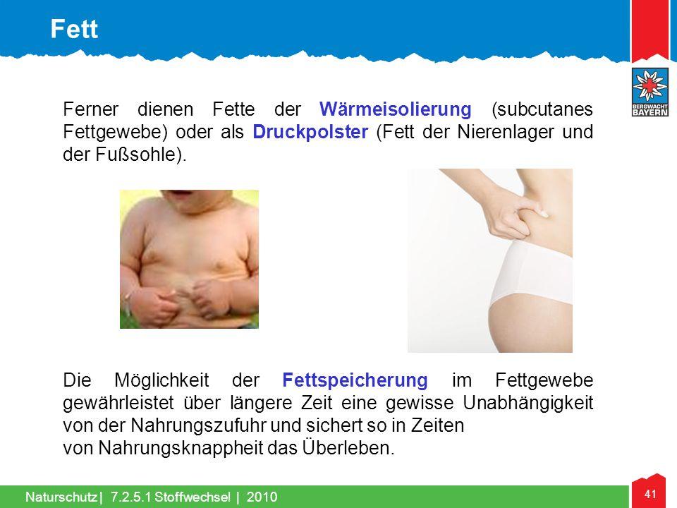 Fett Ferner dienen Fette der Wärmeisolierung (subcutanes Fettgewebe) oder als Druckpolster (Fett der Nierenlager und der Fußsohle).