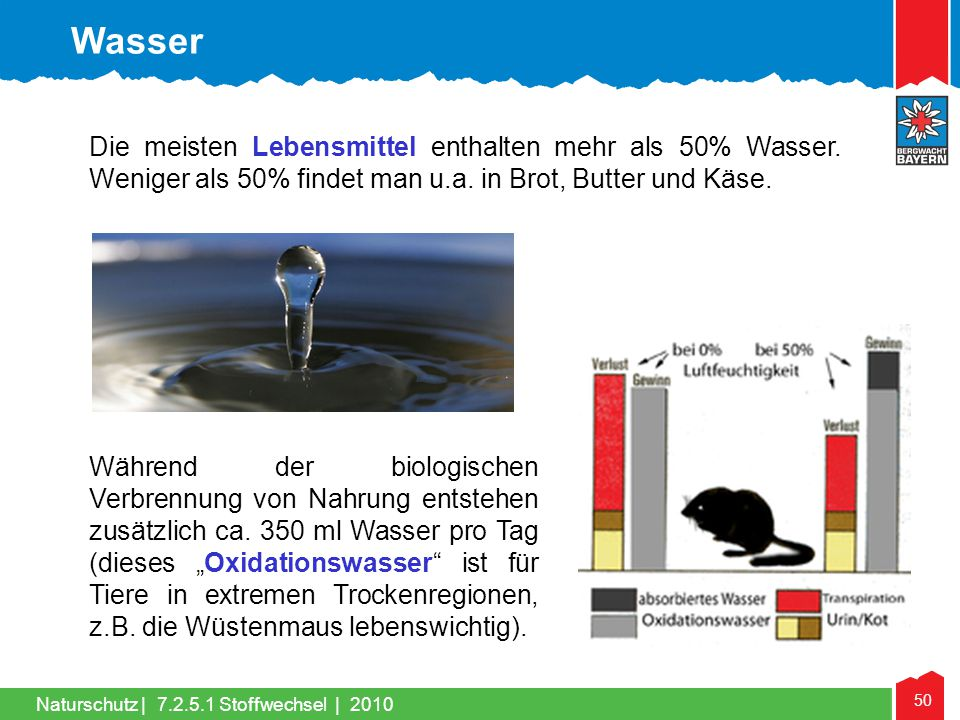 Wasser Die meisten Lebensmittel enthalten mehr als 50% Wasser. Weniger als 50% findet man u.a. in Brot, Butter und Käse.