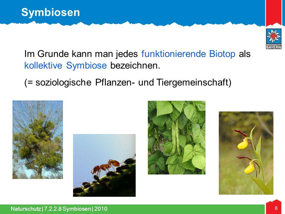 Symbiosen Im Grunde kann man jedes funktionierende Biotop als kollektive Symbiose bezeichnen.