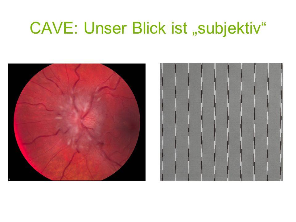 "CAVE: Unser Blick ist ""subjektiv"
