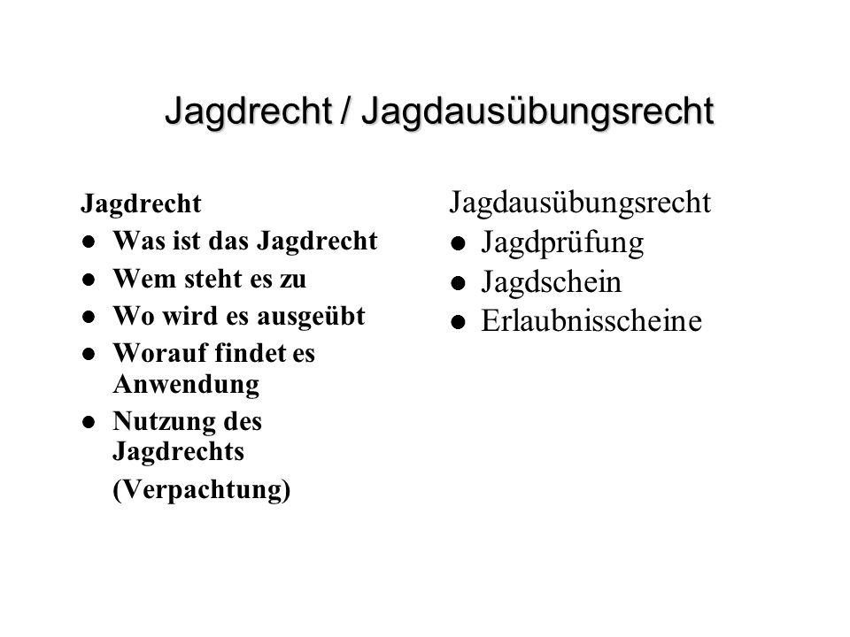 Jagdrecht / Jagdausübungsrecht