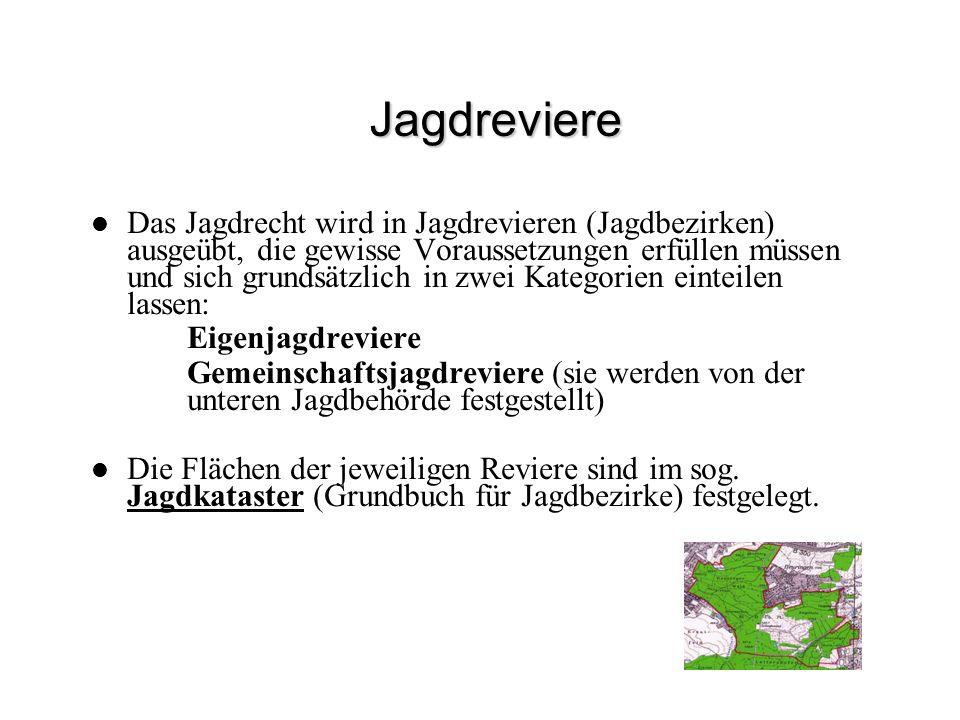 Jagdreviere