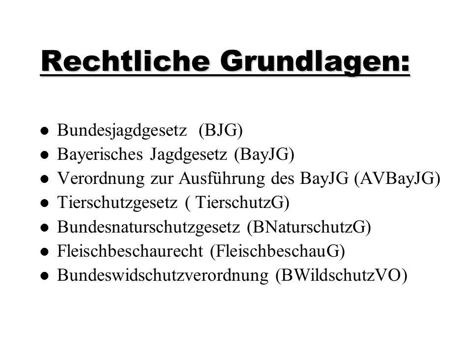 Rechtliche Grundlagen: