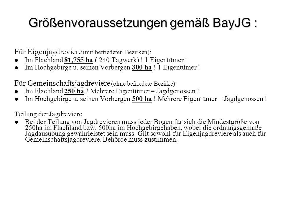 Größenvoraussetzungen gemäß BayJG :