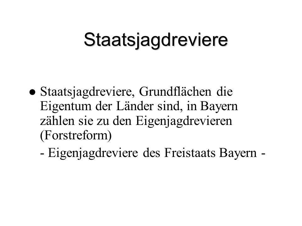 Staatsjagdreviere Staatsjagdreviere, Grundflächen die Eigentum der Länder sind, in Bayern zählen sie zu den Eigenjagdrevieren (Forstreform)