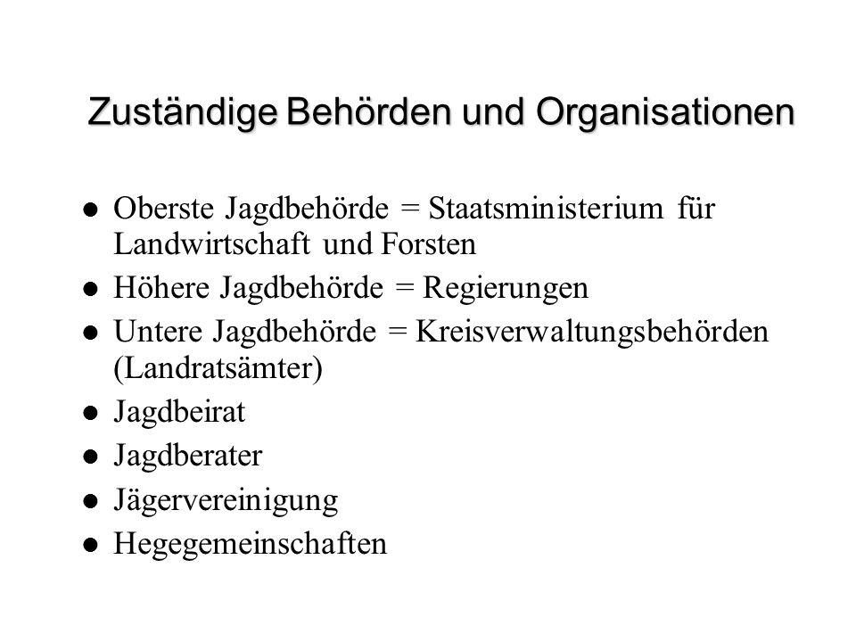 Zuständige Behörden und Organisationen