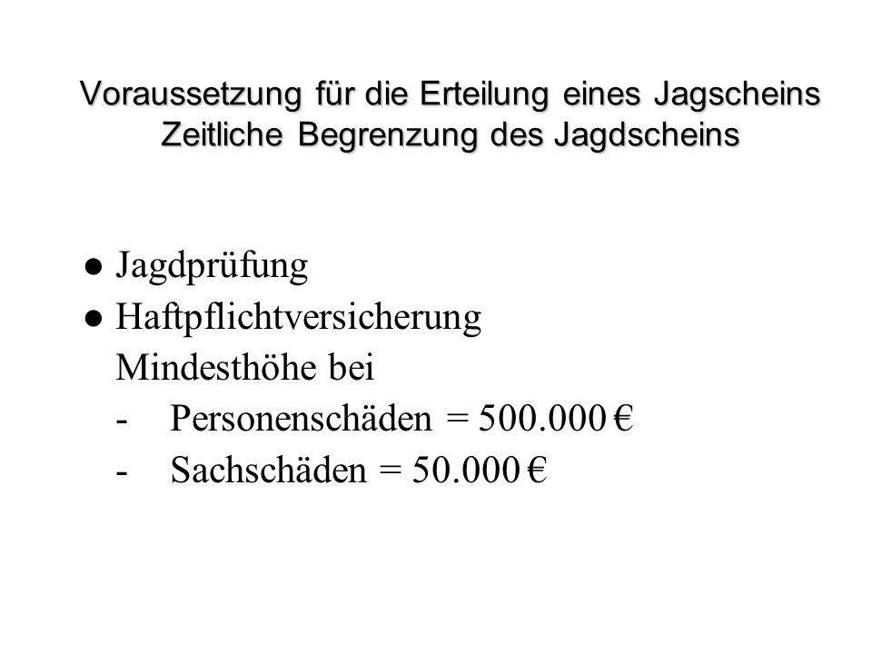 Haftpflichtversicherung Mindesthöhe bei - Personenschäden = 500.000 €
