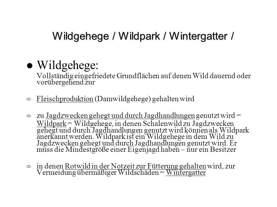 Wildgehege / Wildpark / Wintergatter /