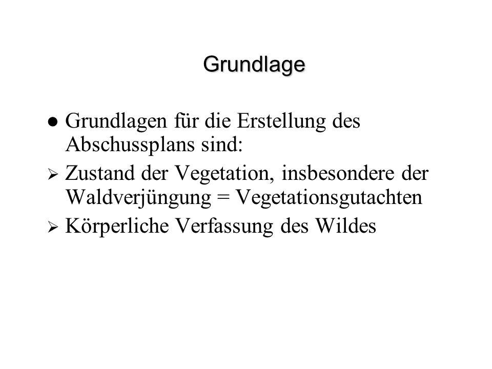 Grundlage Grundlagen für die Erstellung des Abschussplans sind: Zustand der Vegetation, insbesondere der Waldverjüngung = Vegetationsgutachten.