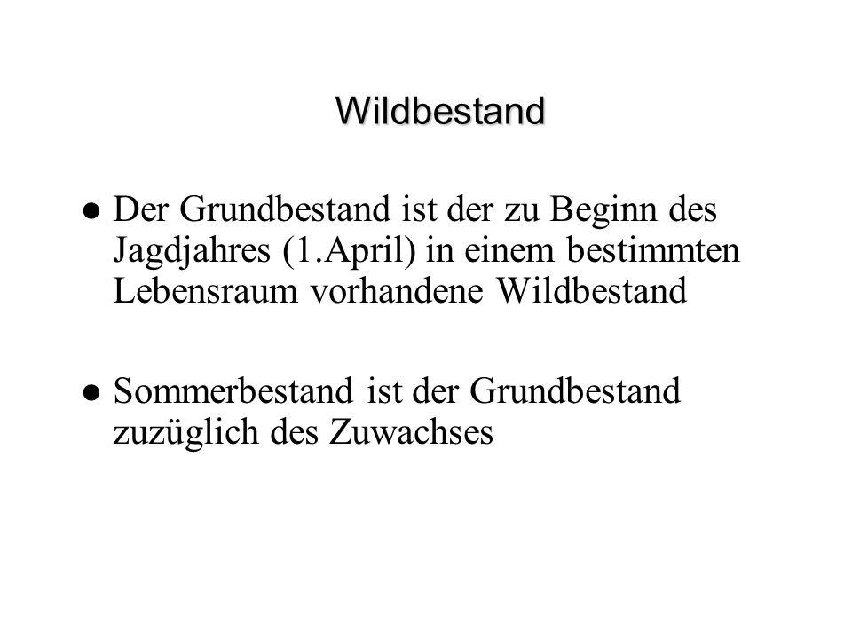 Wildbestand Der Grundbestand ist der zu Beginn des Jagdjahres (1.April) in einem bestimmten Lebensraum vorhandene Wildbestand.