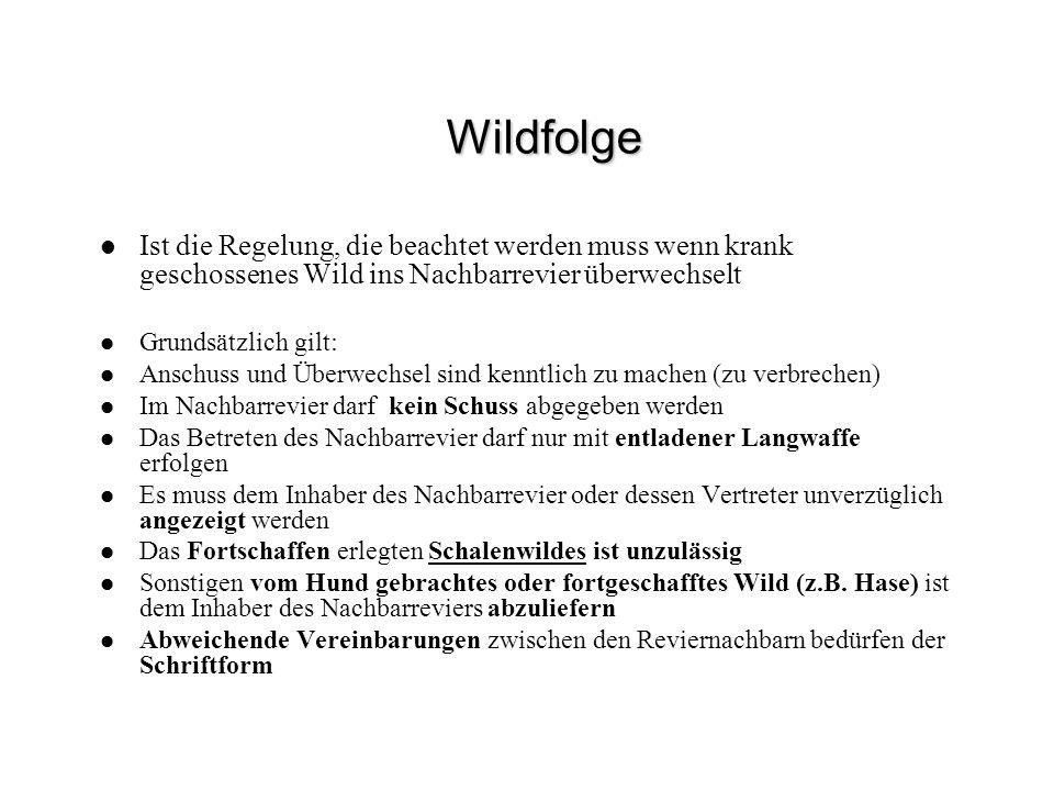 Wildfolge Ist die Regelung, die beachtet werden muss wenn krank geschossenes Wild ins Nachbarrevier überwechselt.