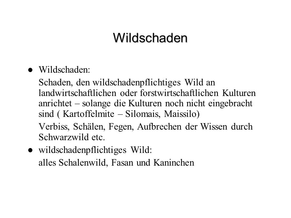 Wildschaden Wildschaden: