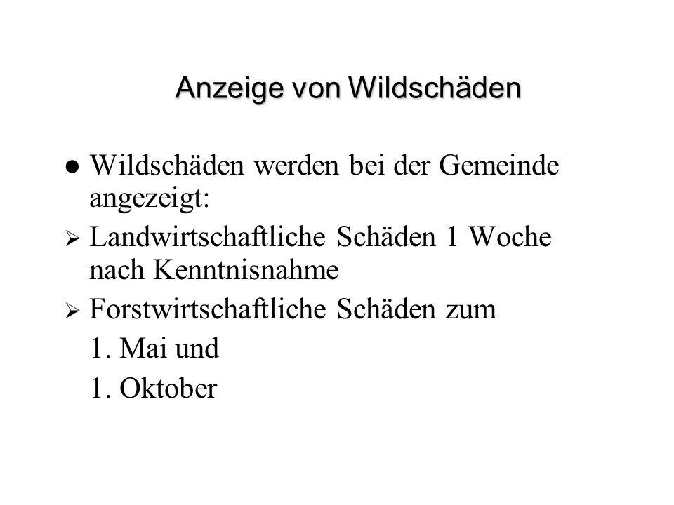 Anzeige von Wildschäden