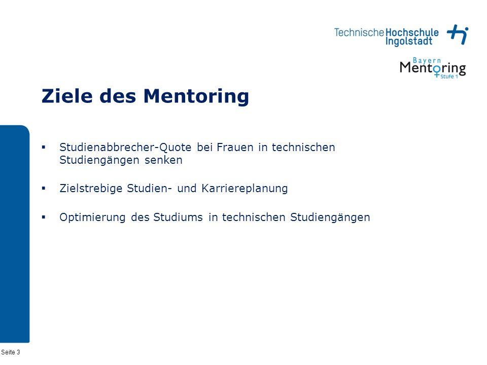 Ziele des Mentoring Studienabbrecher-Quote bei Frauen in technischen Studiengängen senken. Zielstrebige Studien- und Karriereplanung.