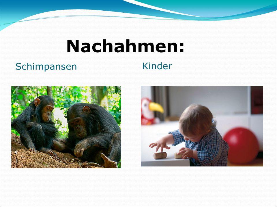 Nachahmen: Schimpansen Kinder
