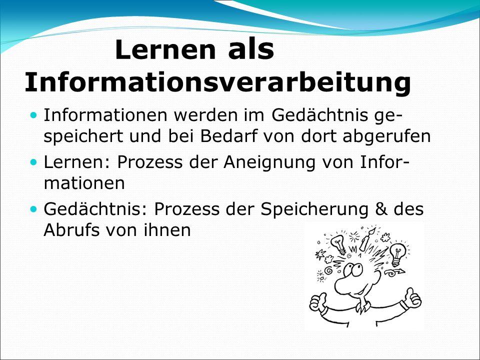 Lernen als Informationsverarbeitung
