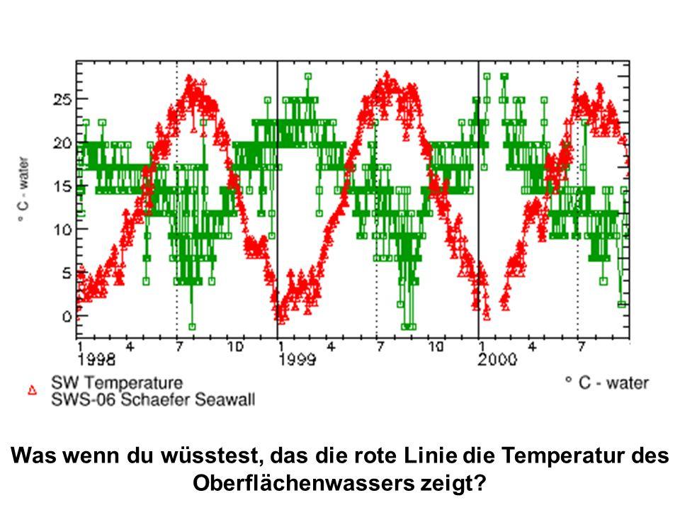 Was wenn du wüsstest, das die rote Linie die Temperatur des Oberflächenwassers zeigt