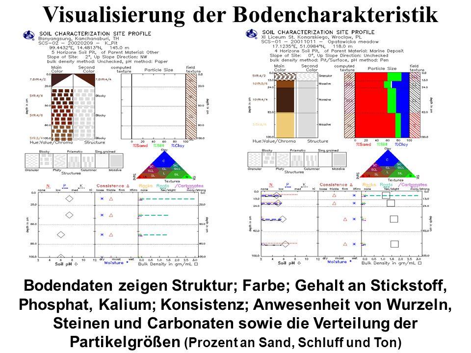 Visualisierung der Bodencharakteristik