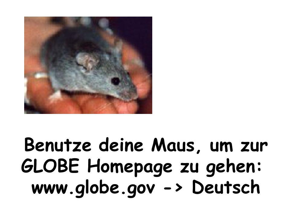 Benutze deine Maus, um zur GLOBE Homepage zu gehen: