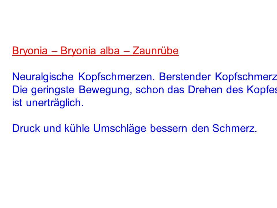 Bryonia – Bryonia alba – Zaunrübe