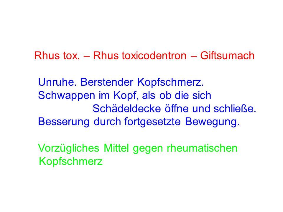 Rhus tox. – Rhus toxicodentron – Giftsumach