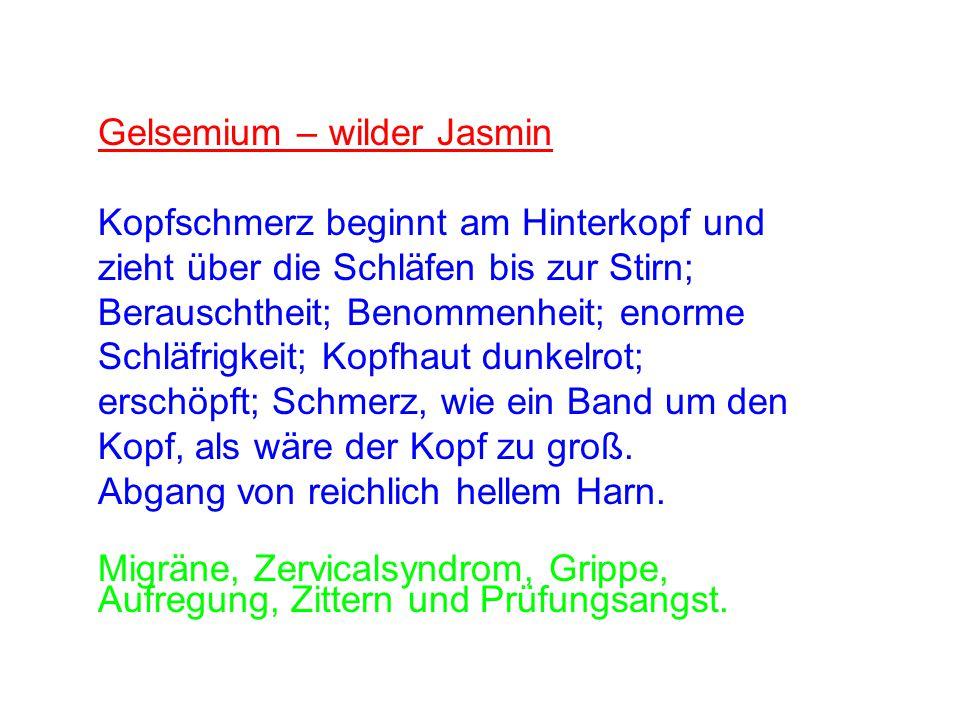 Gelsemium – wilder Jasmin