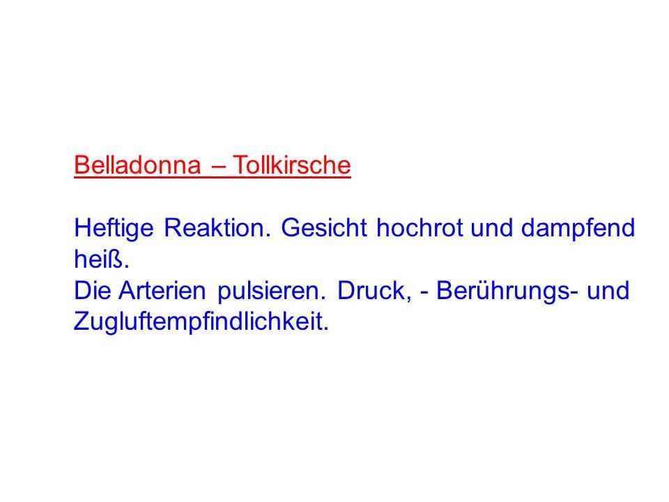Belladonna – Tollkirsche