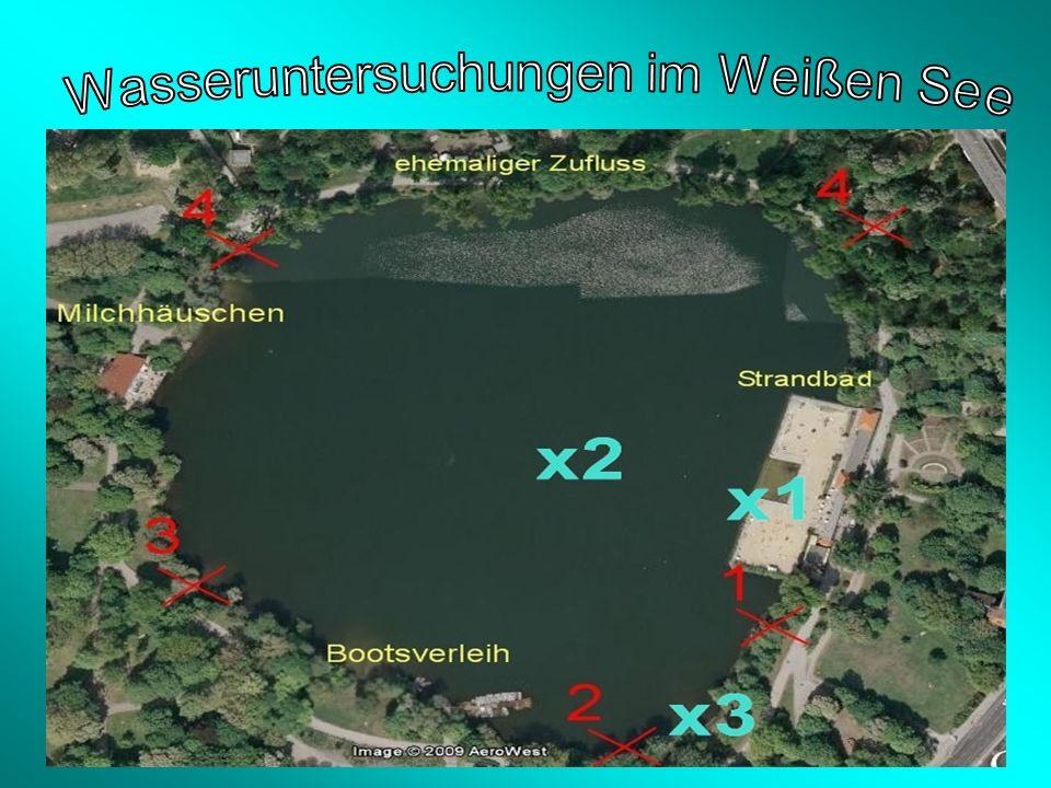 Wasseruntersuchungen im Weißen See