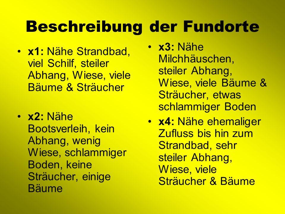 Beschreibung der Fundorte