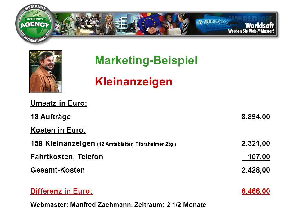 Marketing-Beispiel Kleinanzeigen Umsatz in Euro: 13 Aufträge 8.894,00