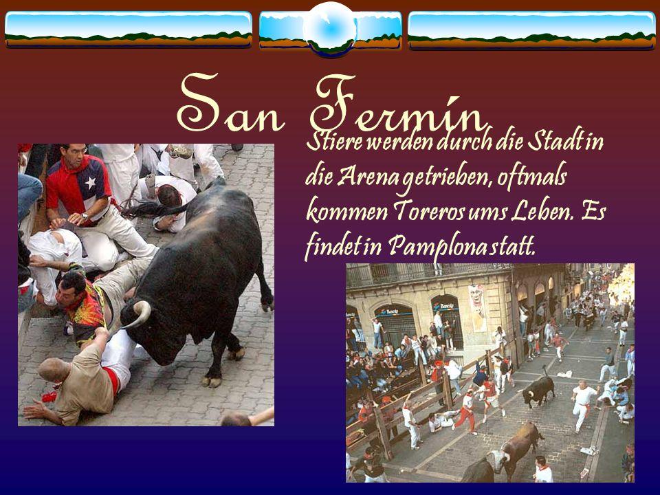 San Fermín Stiere werden durch die Stadt in die Arena getrieben, oftmals kommen Toreros ums Leben.