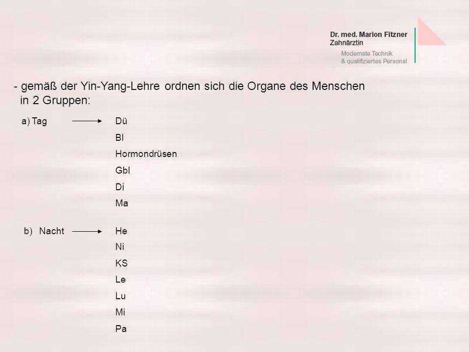 - gemäß der Yin-Yang-Lehre ordnen sich die Organe des Menschen