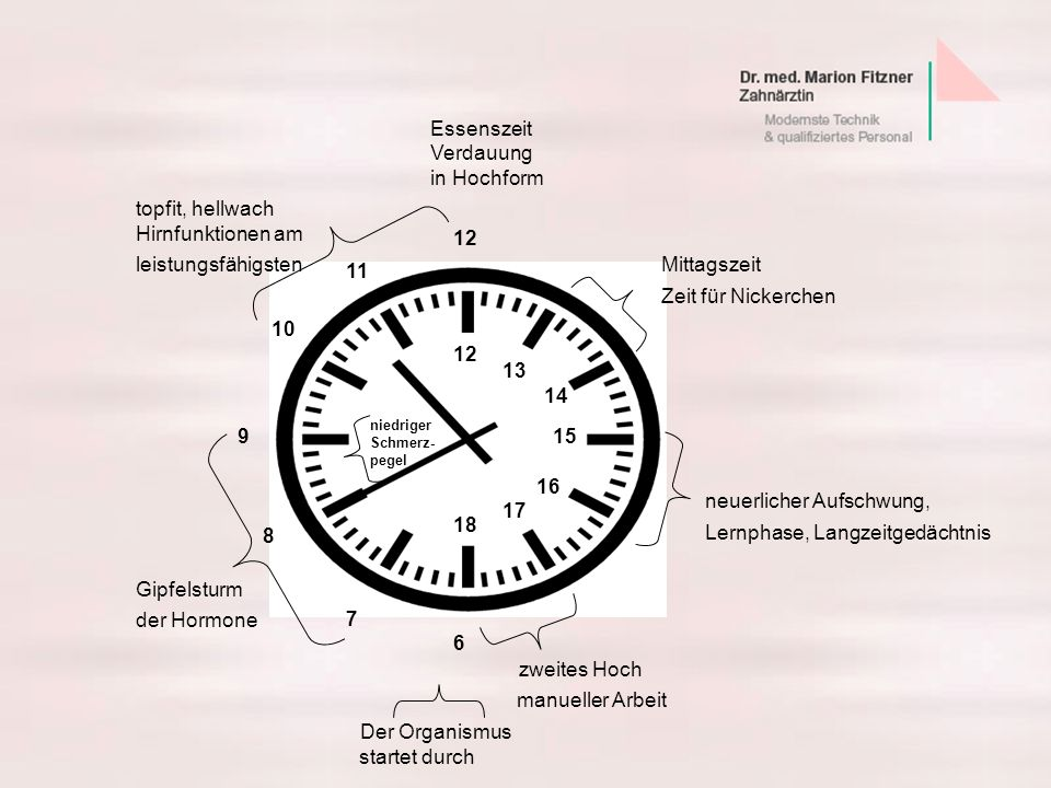 Zeit für Nickerchen manueller Arbeit Der Organismus Essenszeit