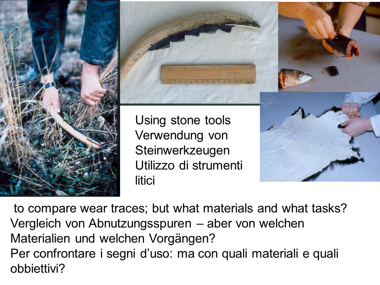 Using stone tools Verwendung von Steinwerkzeugen. Utilizzo di strumenti litici. to compare wear traces; but what materials and what tasks