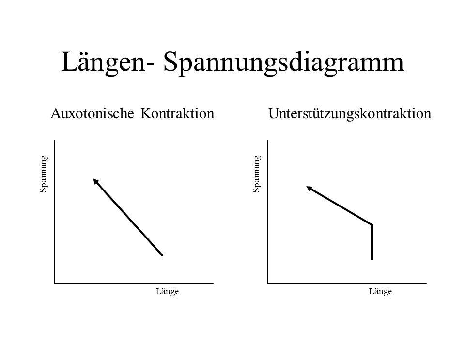 Längen- Spannungsdiagramm
