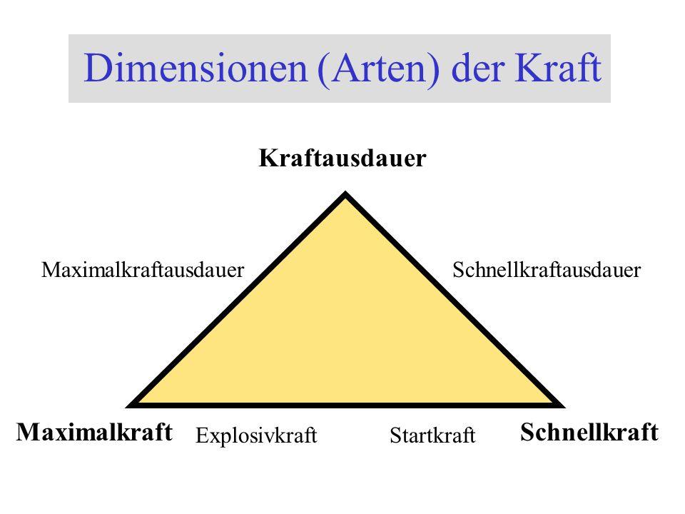 Dimensionen (Arten) der Kraft