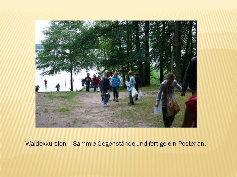Waldexkursion – Sammle Gegenstände und fertige ein Poster an.