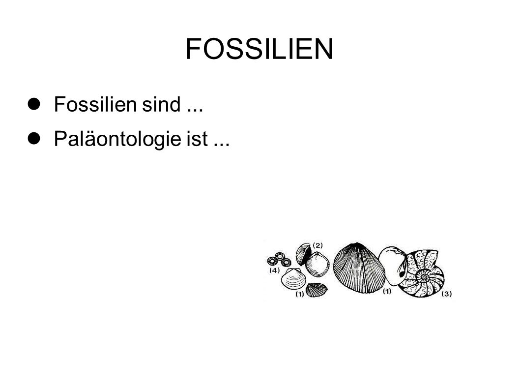 FOSSILIEN Fossilien sind ... Paläontologie ist ... 2