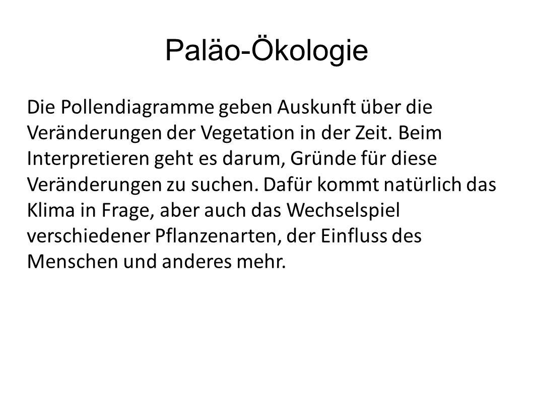 Paläo-Ökologie