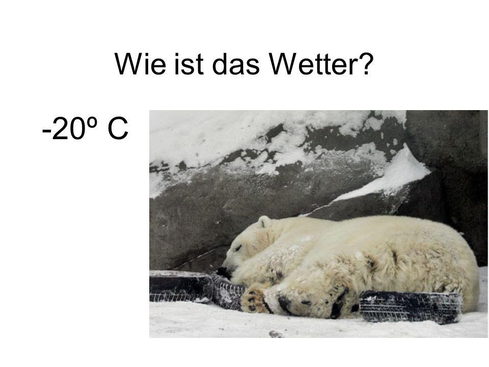 Wie ist das Wetter -20º C
