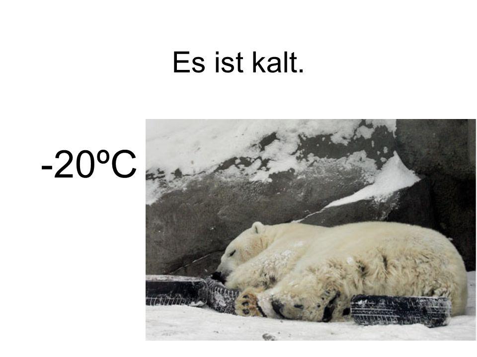 Es ist kalt. -20ºC