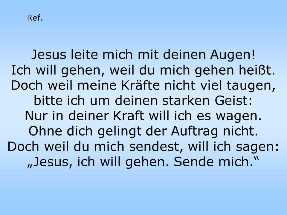 Jesus leite mich mit deinen Augen!