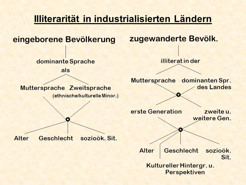 Illiterarität in industrialisierten Ländern