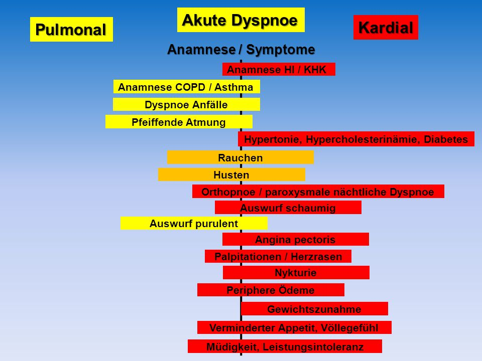 Akute Dyspnoe Kardial Pulmonal Anamnese / Symptome Anamnese HI / KHK