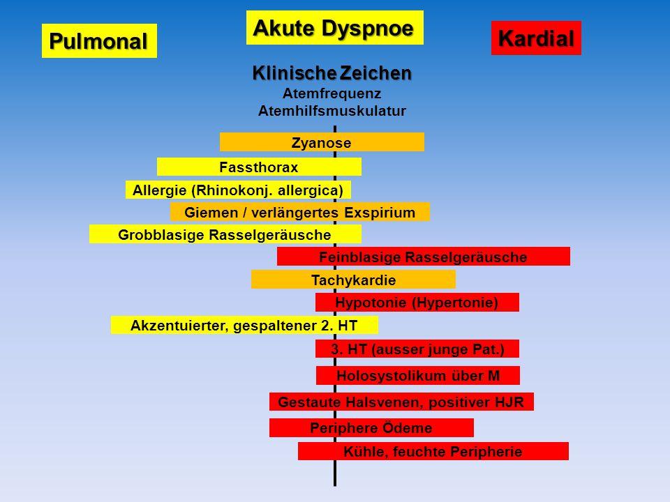 Akute Dyspnoe Kardial Pulmonal Klinische Zeichen Atemfrequenz