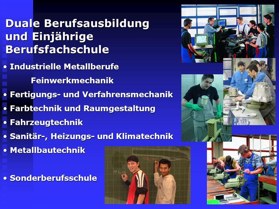 Duale Berufsausbildung und Einjährige Berufsfachschule